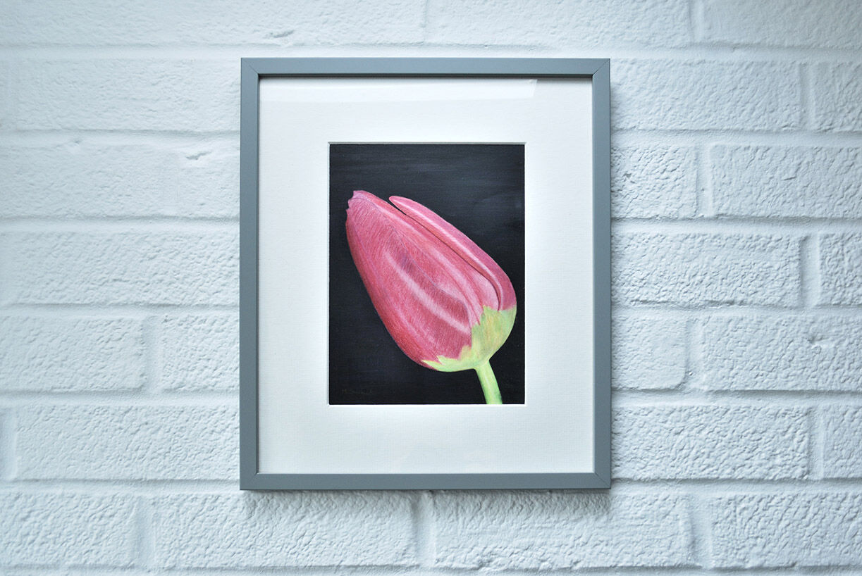 A Tulip for Mum (Sold)