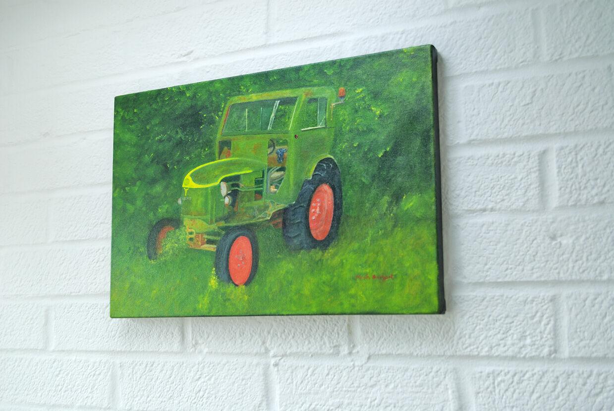 Neglected Deutz Tractor hanging
