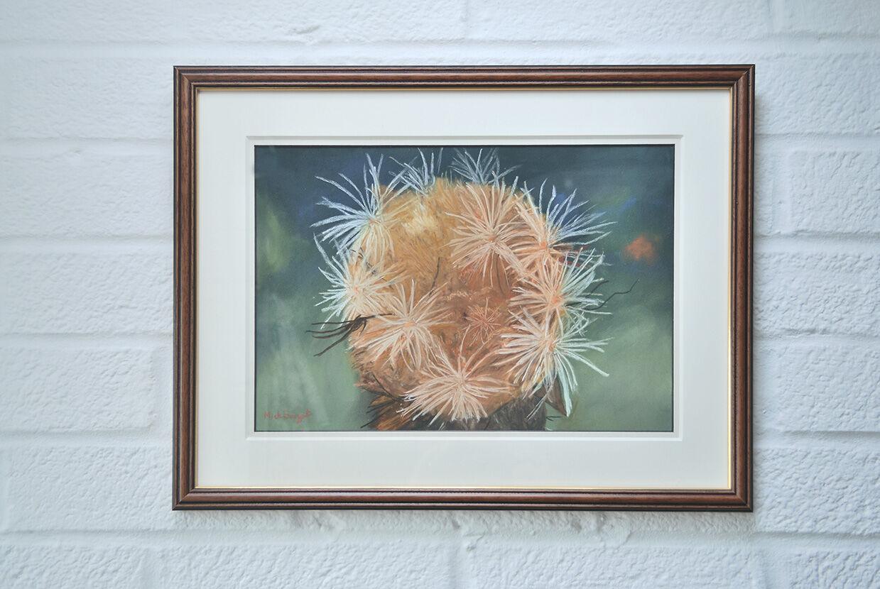 Cynara Ranunculus Seed Head