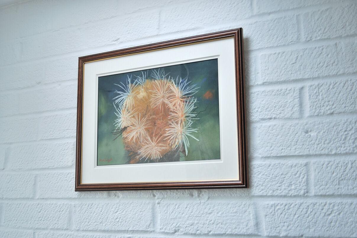'Cynara Ranunculus Seed Head' hanging