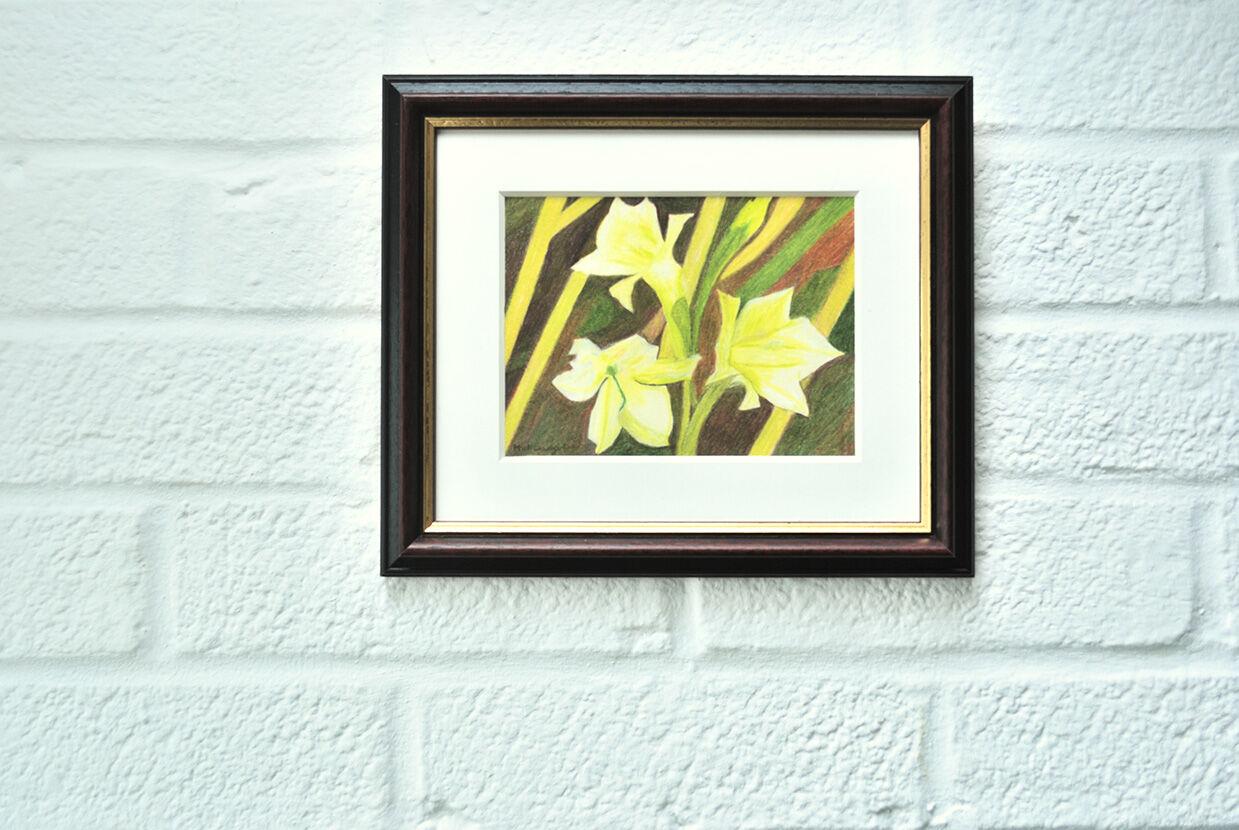 Mini Gladiolus