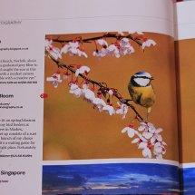 SLR Magazine