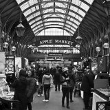 The Old Apple Market