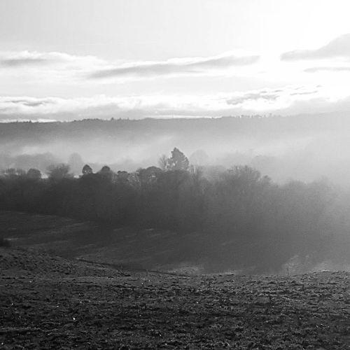 Easby Mist