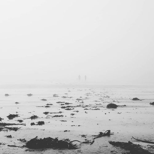 People in the mist