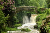 Jesmond Dene, Newcastle