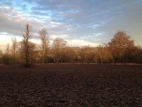 Audley End Estate(Shot on iphone)Saffron Walden