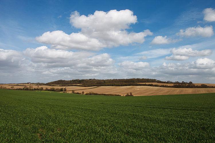 Aston Vale<br>Landscape Nr Stevenage<br>Hill Residential