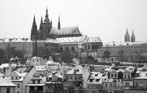 cathedral in mono