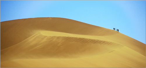 dune walkers, namibia