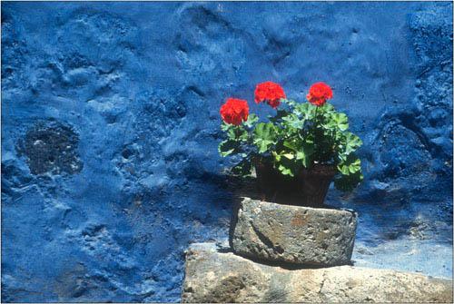 red on blue, peru