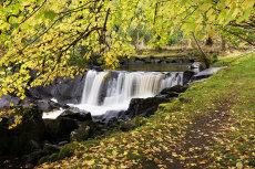 Waterfall, Killarney National Park, County Kerry