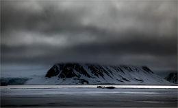 Arctic gathering