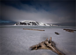 Arctic Wilderness