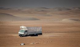Deserted truck
