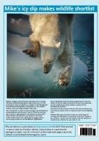 Arctic Plunge Article