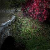 Lukesland in autumn 2
