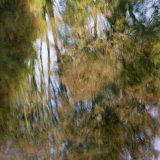 Lukesland in autumn 5