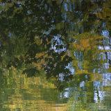 Lukesland in autumn 10