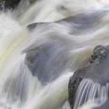 River Plym 5
