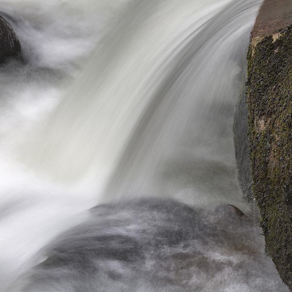 River Plym 7