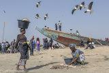 Tanji fishing village, Gambia 7.jpg