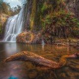 Guide Falls 3. Tasmania.