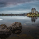 Dunguaire Castle and swans. Kinvara. County Galway.
