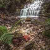 Liffey Falls.  Tasmania.