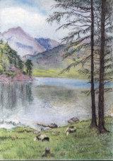 Blea Tarn by Liz Clark - Pastel