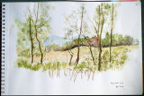 Blelham NNR by Margaret Copestake - Watercolour