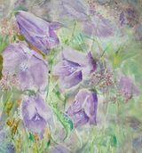 Harebells by Jenifer Alison - WC