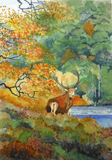 Stag at Bay by John Conway - WC