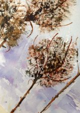 Teasels by Jenifer  Alsion - Watercolour