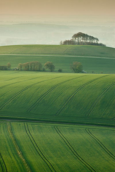 From Walker's Hill
