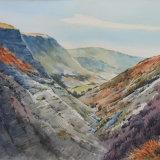 Afon Twymyn gorge, Powys