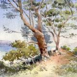 Coastal trees, Italy