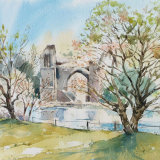 Springtime, Lilleshall Abbey