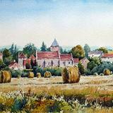 Burgundy cornfield