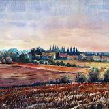 Evening fields - Burgundy