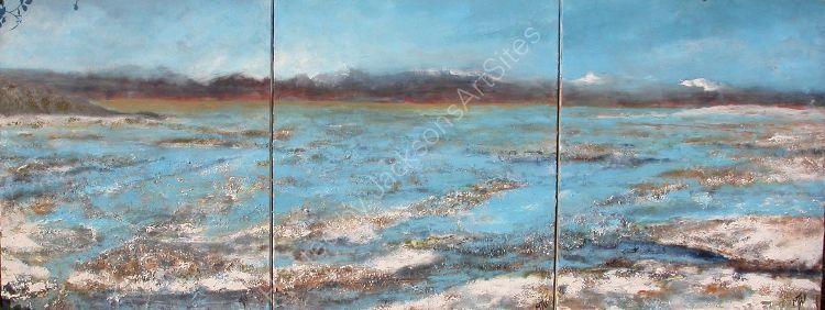 Bolvian Salt fields  Commissioned Triptych