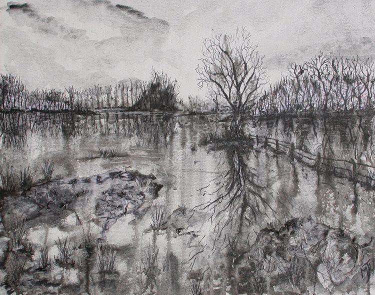 Flooded Fields Loire Valley