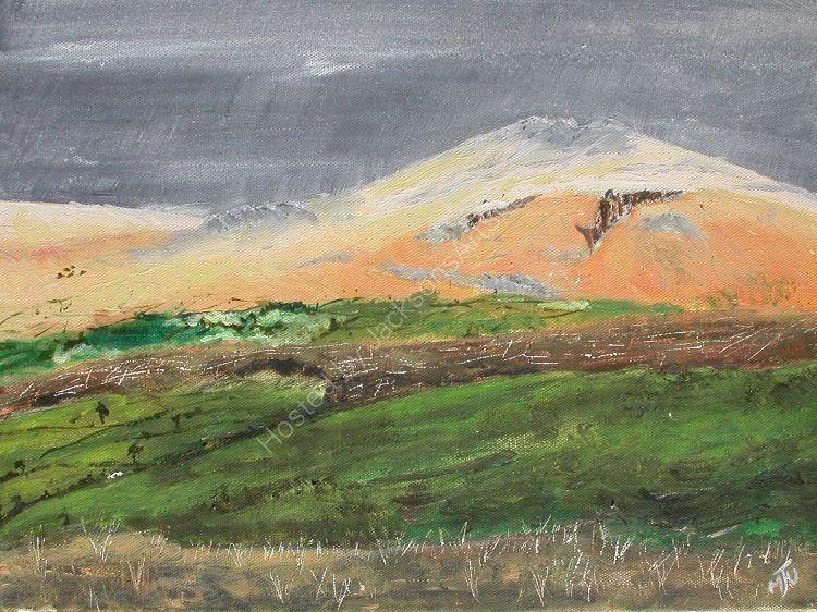 Pembrokeshire  Scene