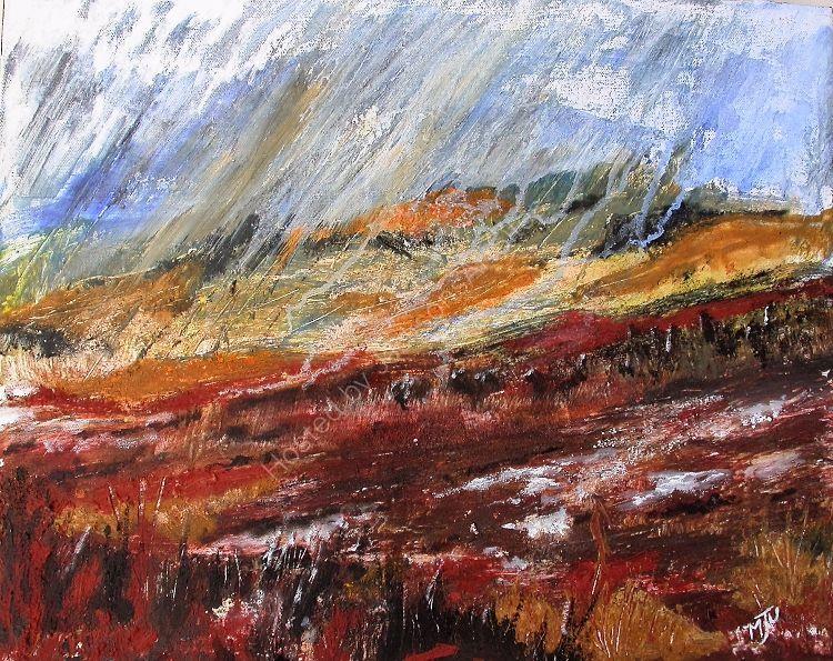 Rain Over Dartmoor