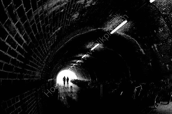 Under the tunnel