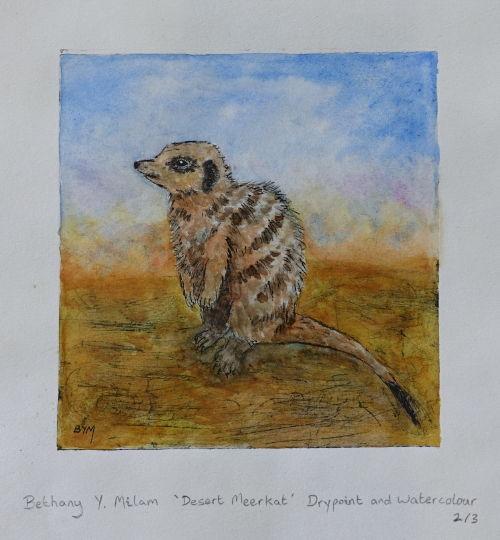 Desert Meerkat