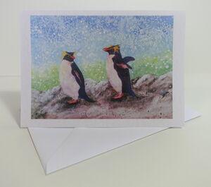 Printed Cards