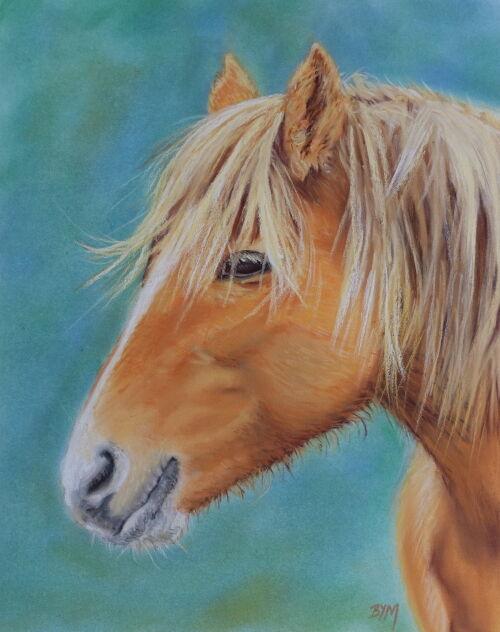 Chustnut Pony