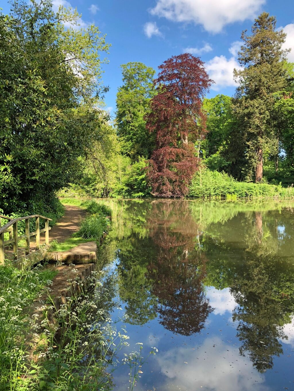 Reflections at Farnborough