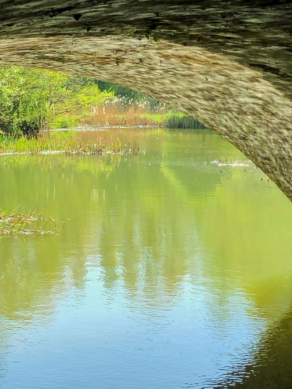 River Cherwell 1